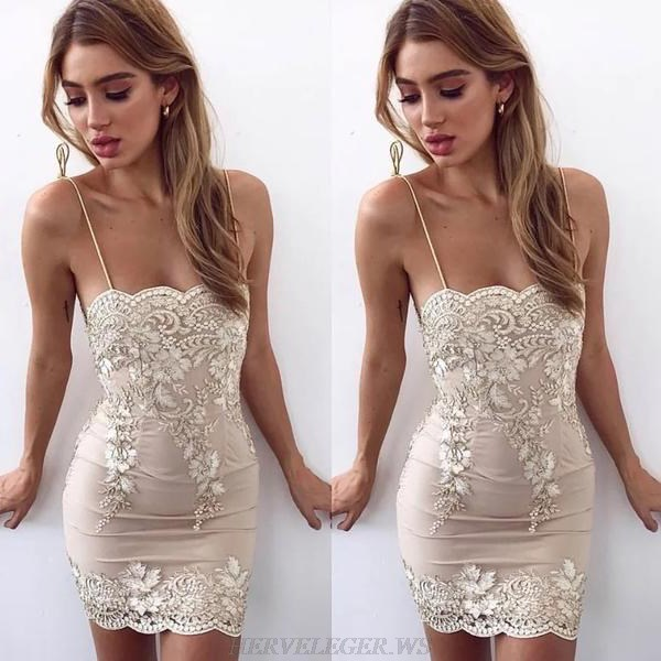 Herve Leger Nude Scalloped Lace Dress