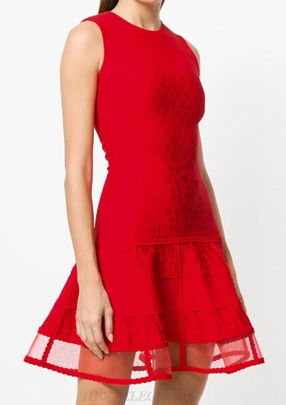 Herve Leger Red Mesh A Line Dress