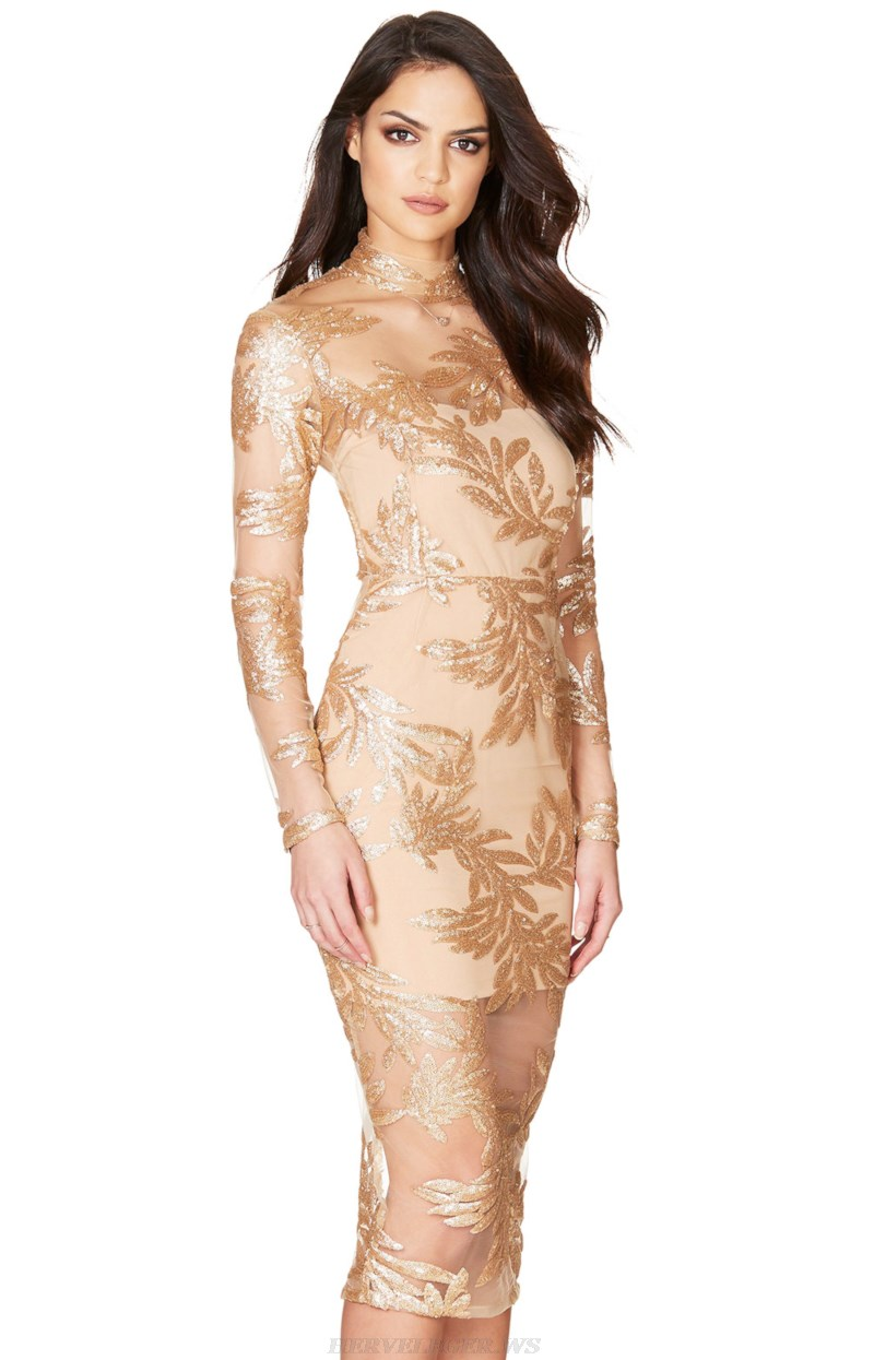Herve Leger Nude Gold Long Sleeve Lace Dress