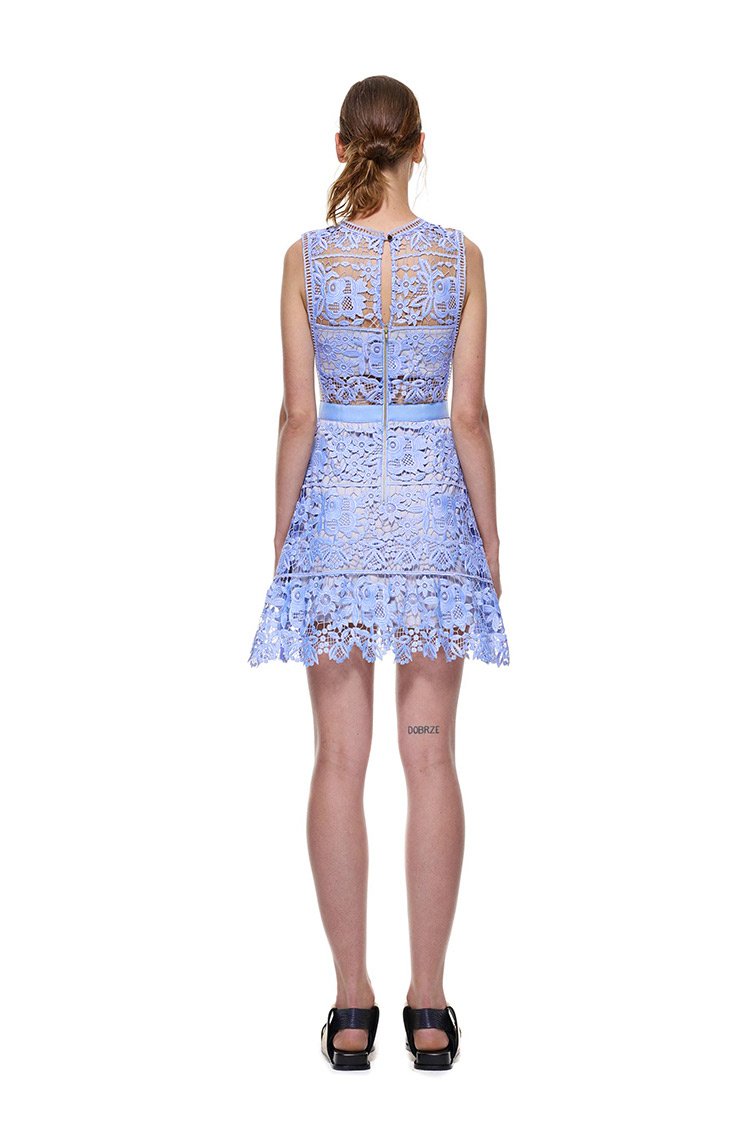 Herve Leger Blue Hollow Flowers Transparent Lace Dress