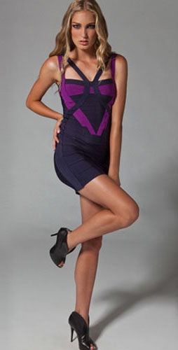 Herve Leger Dark Blue With Purple Beautify Dress