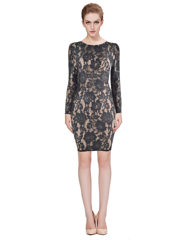 Herve Leger Black Lace Translucent Long Sleeved Dress